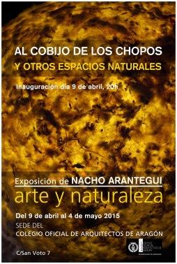 Al cobijo de los chopos y otros espacios naturales (Copy)