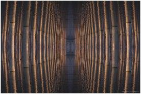 fractal choperas 1 (Copy)
