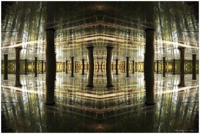 fractal choperas (Copy)