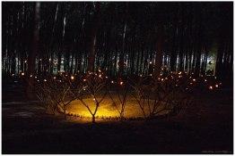 La corona de las luciérnagas 3 (Copy)