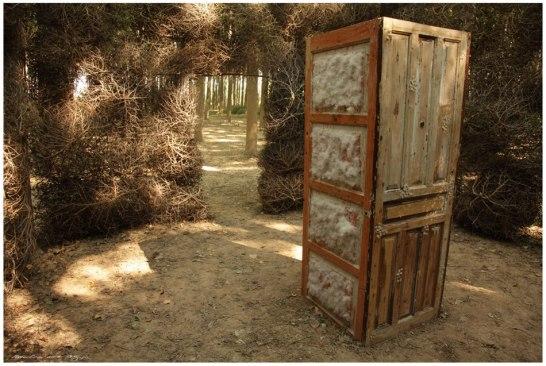 Las puertas de salsola Kali 1 (Copy)