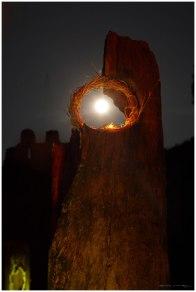 Velada llama, piedra y fuego 6 (Copy)